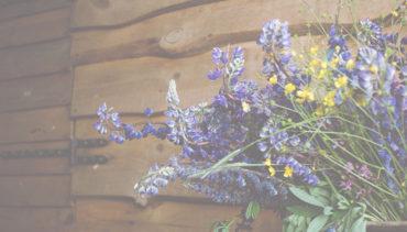Spring Herb FES.